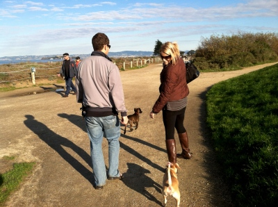 Dog Walking through Golden Gate Park