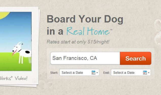 Dog Boarding Insurance Cost