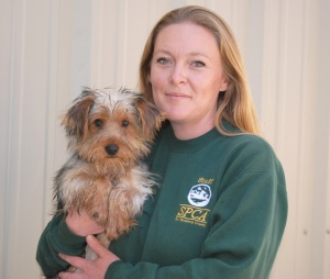 Monterey County SPCA rescues dogs