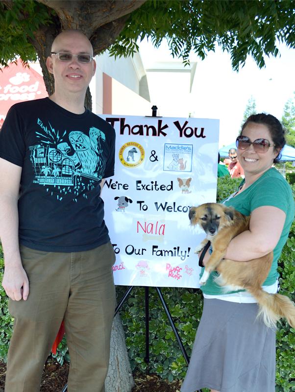 Dog Days Adoption Event Chester Ct