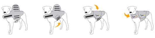 thundershirt_instructions